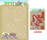 Rabbit maze for kids Royalty Free Stock Image