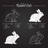 RABBIT meat cuts scheme - chalkboard royalty free stock images