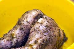Rabbit meat. Seasoned with herbs in bowl Stock Photography