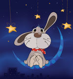 Rabbit on the moon cartoon Stock Images