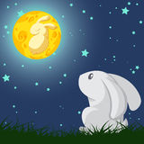 Rabbit and the moon Stock Photos