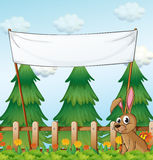 A rabbit near the wooden fence below the empty banner Royalty Free Stock Image
