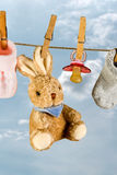 Rabbit and pacifier Royalty Free Stock Images