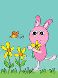 Rabbit pick flower Royalty Free Stock Images