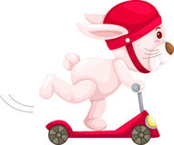 Rabbit playing scooter vector Royalty Free Stock Photo