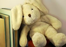 A rabbit plush toy leans on a row of books. stock photos