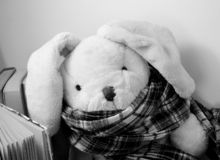 A rabbit plush toy with a scarf is sitting next to standing books. royalty free stock image