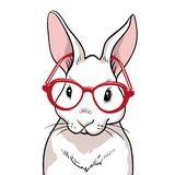 Rabbit portrait with red glasses isolated. Rabbit on a white background vector illustration