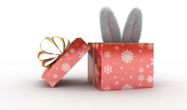 Rabbit present box Royalty Free Stock Images