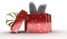 Rabbit present box Royalty Free Stock Photography
