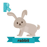Rabbit. R letter. Cute children animal alphabet in vector. Funny Stock Images