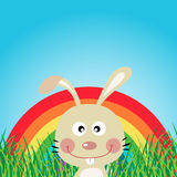 Rabbit with rainbow in the forest Stock Image