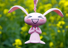 Rabbit  and rape petal Stock Image