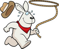 Rabbit Rodeo. A happy cartoon rodeo rabbit running with a lasso Stock Photos