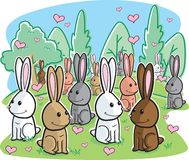 Rabbit Romance Stock Images