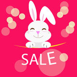 Rabbit with sale message Royalty Free Stock Photography