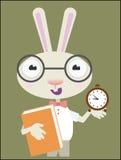 Rabbit school Stock Photo
