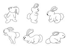 Rabbit set. Illustrator design .eps 10 Vector Illustration