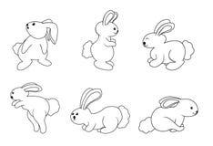 Rabbit set. Illustrator design .eps 10 Stock Photo