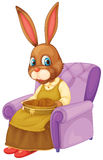Rabbit sitting Stock Photo