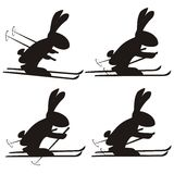 Rabbit. On skis in different positions - silhouettes Stock Images
