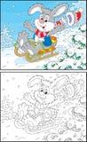 Rabbit sledding Royalty Free Stock Image