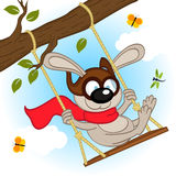 Rabbit on swing on tree branch Stock Images