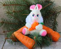 Rabbit a symbol 2011 Royalty Free Stock Images