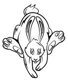 Rabbit Tattoo Stock Images