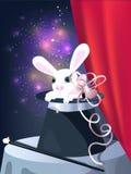 Rabbit in top hat Stock Image