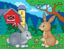 Rabbit topic image 5