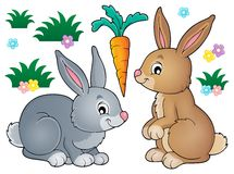 Rabbit topic image 1 Royalty Free Stock Image