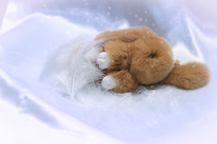 Rabbit toy. A nice fluffy rabbit toy is sleeping under the cover of soft feathers Royalty Free Stock Photos