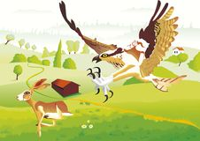 A rabbit try to escape of an eagle. An hungry eagle try to catch a poor rabbit. In landscape with hills and fields Stock Images