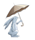 Rabbit with umbrella. Cartoon rabit with open umbrella Royalty Free Stock Images