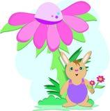 Rabbit Under Flower Stock Image