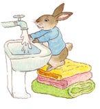 Rabbit washing his hands.  Royalty Free Stock Photos