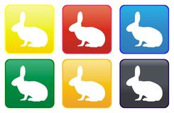 Rabbit web buttons Royalty Free Stock Image