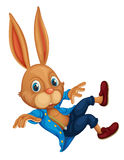 Rabbit on white Stock Photography