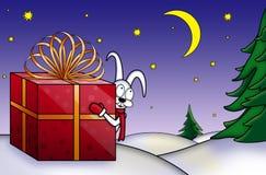 Rabbit white little Royalty Free Stock Image