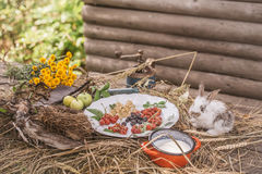 Rabbit with wild berries milk and green apples Royalty Free Stock Photos