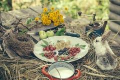 Rabbit with wild berries milk and green apples Stock Photos