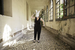 Rabbit woman attack Royalty Free Stock Images