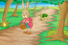 Rabbit in woods. Illustration of rabbit and animals in the woods royalty free illustration