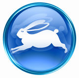 Rabbit Zodiac icon blue Royalty Free Stock Images