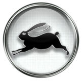 Rabbit Zodiac icon grey Royalty Free Stock Images