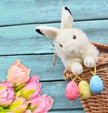 Rabbits in the basket with Easter eggs and flower Stock Image