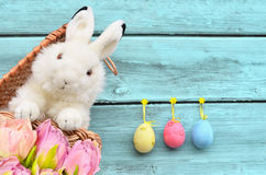 Rabbits in the basket with Easter eggs and flower Royalty Free Stock Image