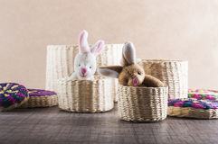Rabbits in a basket. Rabbits out of wicker baskets Royalty Free Stock Photo