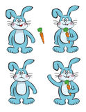 Rabbits and carrots Stock Photo